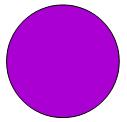 12 violett